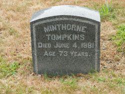 Mangle Minthorne Tompkins
