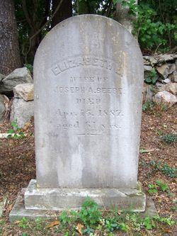 Elizabeth L. Beebe