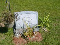 David A. Wallace, Jr