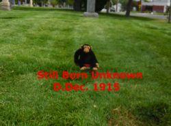 Still Born Unknown