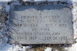 Edward Carl Dey
