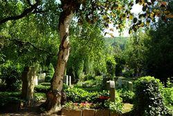 Friedhof Hosterwitz