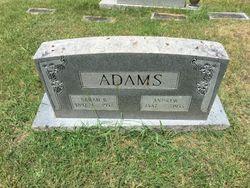 Sarah B Adams