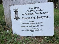 Thomas N Sedgwick