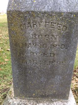 Mary <I>Mason</I> Reed