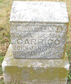 Mary Linna Carrico