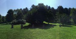 Pepe Family Cemetery