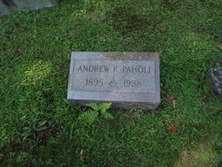 Andrew Paholi