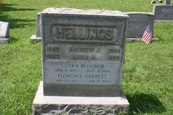 Andrew J Hellings