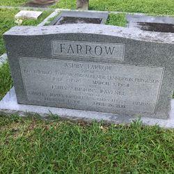 Emily Simmons <I>Ravenel</I> Farrow