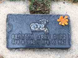 Kenneth Leroy Burr