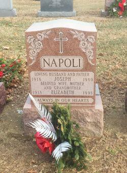 Joseph Napoli
