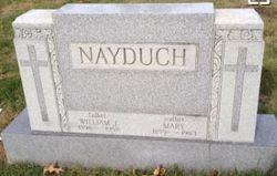 William J Nayduch