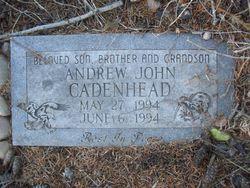Andrew John Cadenhead