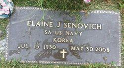 Elaine Joyce <I>Knope</I> Senovich