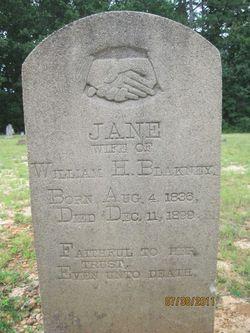 Laura Jane <I>Presley</I> Blakney