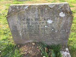 Agnes M T Del Riego
