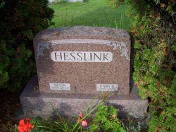 Delia <I>Soerens</I> Hesslink