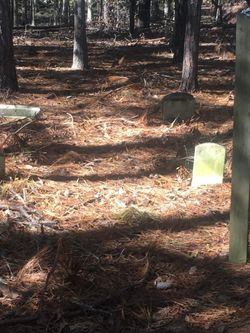 Bachelor Swamp Cemetery