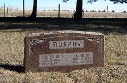 Agnes M Murphy