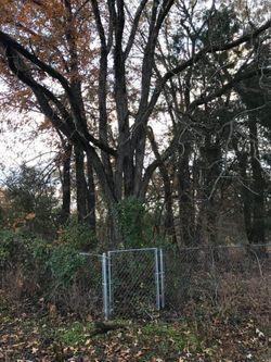 Dancy-Scott Cemetery