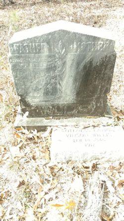 Andrew Jackson Willis, Jr