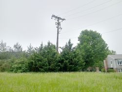 Parker Family Cemetery (Defunct)