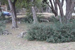 Simon Cemetery