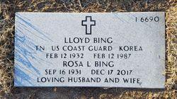 Lloyd Bing