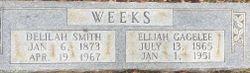 Elijah Gagelee Weeks