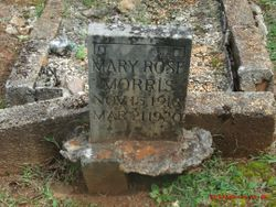 Mary Rose Morris