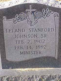 Leland Stanford Johnson, Jr