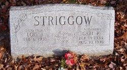 Lois J. Striggow