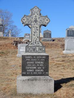 Catherine <I>McManns</I> Dowling