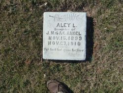 Aley L Angel