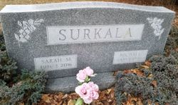 "Sarah M ""Sadie"" <I>Jackson</I> Surkala"