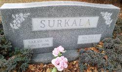 Michael Surkala
