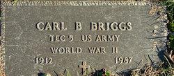 Carl Bruce Briggs
