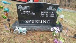 James Earl Spurling, Sr