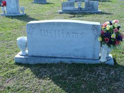 Ellen Teresa <I>Hammett</I> Williams