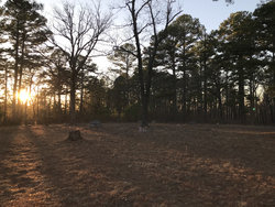 Pine Top Cemetery