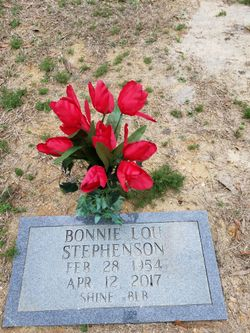 Bonnie Lou <I>Meadows</I> Stephenson