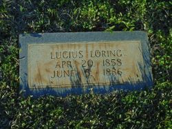 Lucius Loring