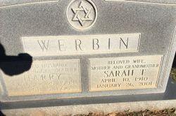 Sarah T Werbin
