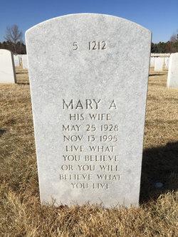 Mary Ann Custy