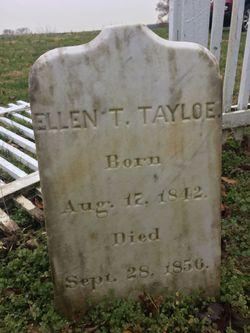 Ellen T Tayloe