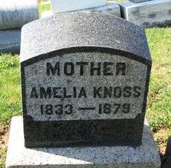 Amelia Knoss