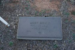 Andy Bowie
