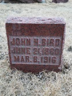 John Henry Bird