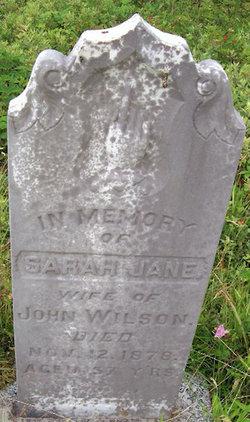 Sarah Jane Bruce Wilson (1821-1875) - Find A Grave Memorial